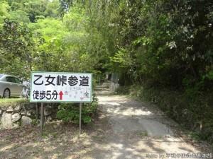 tsuwanoOtometoge_20140503-018